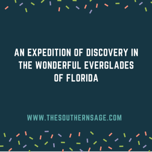 early expedition. an expedition of discovery in the wonderful everglades of Florida
